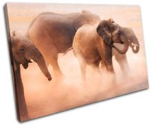 Baby Elephant Animals - 13-0978(00B)-SG32-LO